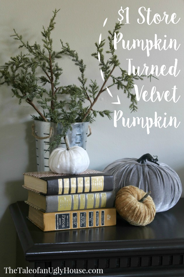 $1 Store Pumpkin Turned Velvet Pumpkin
