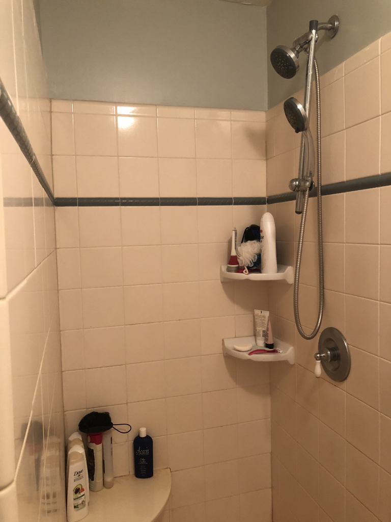 Master Bathroom Renovation - ORC Week 2